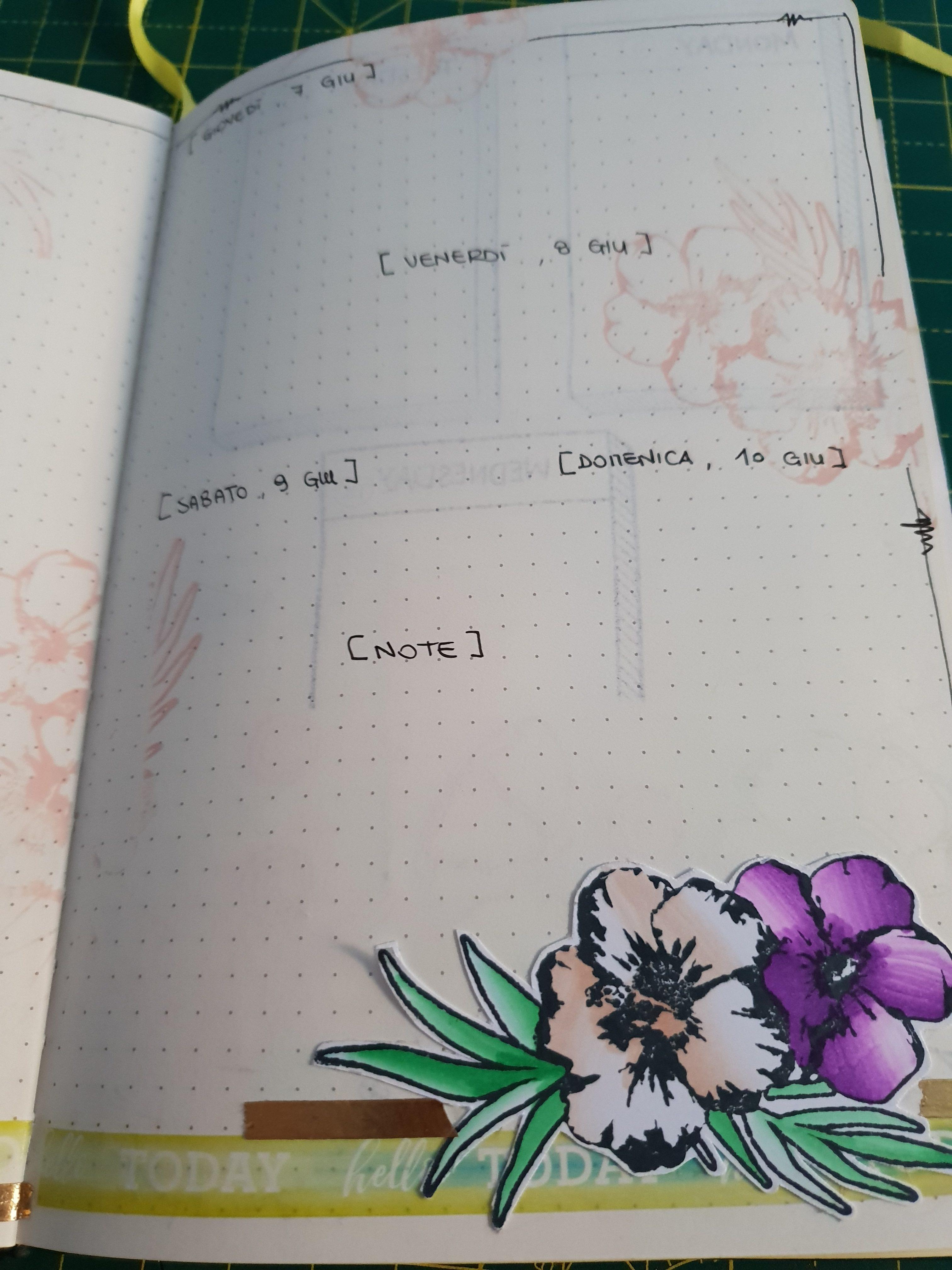 Bullet Journal : Set up di giugno e prima settimana