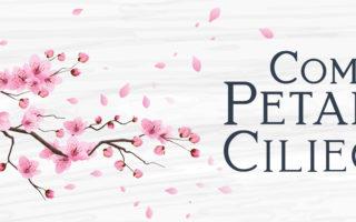Come petali di ciliegio social