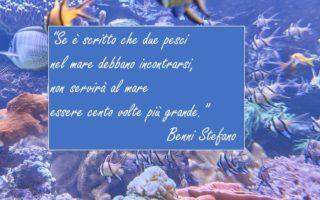 12 Agosto 2019 Benni Stefano (1)